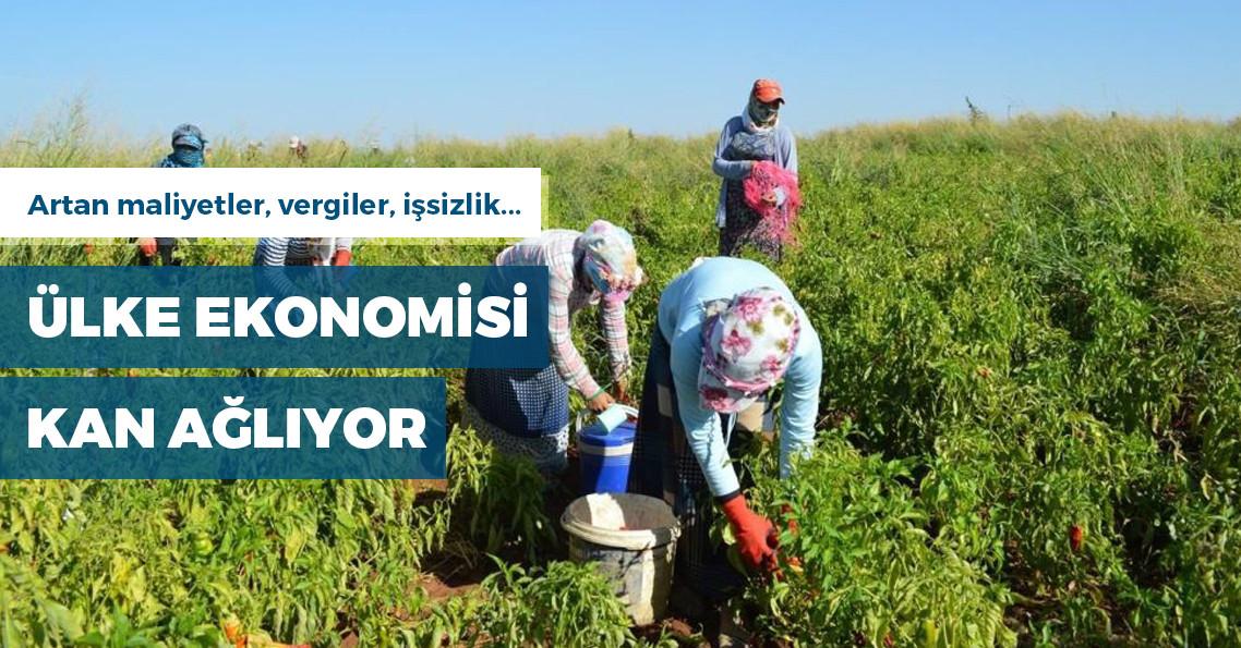 Tarımda üretim maliyeti yüzde 27 arttı