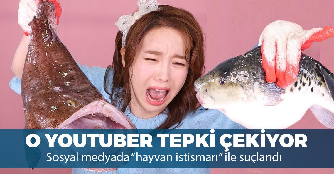 Canlı hayvan yerken video çeken Koreli Youtuber'a büyük tepki