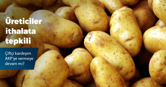 Patates üreticilerinden bakanlığın patates ithalatına sert tepki