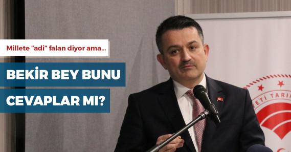 """Fatih Portakal'dan Bakan Pakdemirli'ye: """"FETÖ'den tutuklu ağabeyiniz kime oy verecek?"""""""