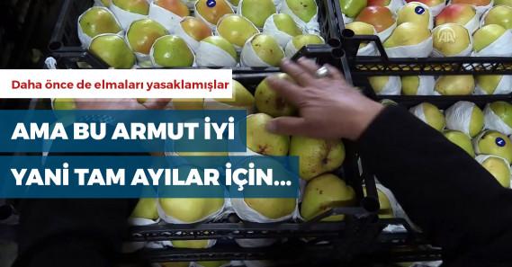 Rusya'dan Türk armuduyla ilgili dikkat çeken karar